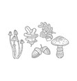 collection of hand drawn plants monochrome leaves vector image