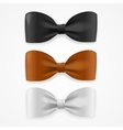 Colorful Bow Tie Set vector image