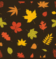 elegant seasonal seamless pattern with autumn vector image