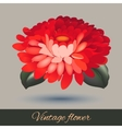 Flower element isolated vector image