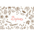 background with various spices used in cooking and vector image