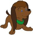 Brown puppy vector image vector image