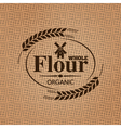 flour sackcloth texture background vector image