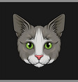 head of grey cat face of pet animal hand drawn vector image