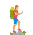 illustration traveler vector image