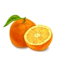 Orange isolated poster or emblem vector image
