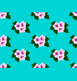 pink hibiscus syriacus - rose of sharon on mint vector image