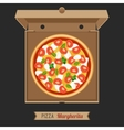 Pizza in the opened cardboard box vector image