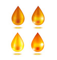 realistic oil or honey drop set vector image vector image
