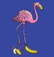 with bright flamingo and vector image