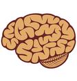 The human brain vector image