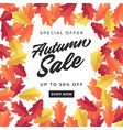 autumn sale banner for shopping sale vector image