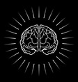 brain with light burst vector image vector image