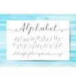 handwritten lettering alphabet vector image vector image