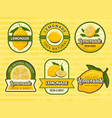 lemonade badges retro labels with lemon vector image vector image