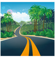 road through the jungle vector image vector image