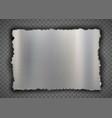 torn metal plate or splinter vector image vector image
