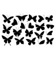 black butterfly silhouettes butterflies icons vector image vector image