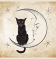 Black cat sitting on the moon wiccan familiar