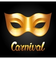 Carnival invitation card with golden mask vector image vector image