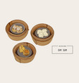 dim sum colorful of chinese vector image vector image