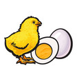 little chicken with boiled peeled egg whole and vector image vector image