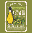 natural olive cooking oil in pitcher vector image