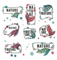 nature frames collection of doodle flowers vector image vector image
