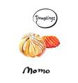 nepalese traditional dumpling momo vector image