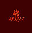 spicy sauce logo vector image