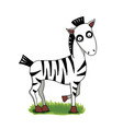 cute cartoon zebra on green grass vector image
