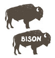 bison icon silhouette with old grunge effect vector image