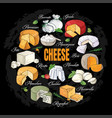 collection of cut sliced cheese assortment hand vector image vector image