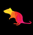 colorful origami rat black background vector image vector image