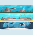 museum aquarium underwater zoo children vector image