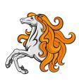 stallion horse vector image vector image