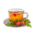 Tea from a dogrose vector image vector image