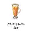 teh tarik the famous malaysian tea vector image vector image