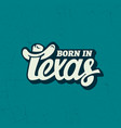 texas lettering vector image vector image