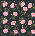 watercolor peony seamless pattern vector image