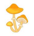cartoon honey fungus mushroom isolated on white vector image
