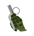 grenade skull head skeleton military ammunition vector image