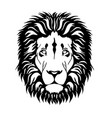 head of lion vector image vector image