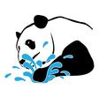 panda-splash-pw vector image vector image