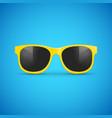 sunglasses eyeglasses hipster fashion vector image