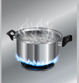 stainless steel pot on the gas stove vector image