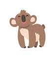 cute funny koala bear standing on four legs vector image