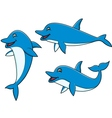 Dolphin cartoon vector image vector image