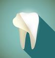 human teeth stock vector image