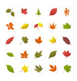 leaves in fall flat icons vector image